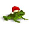 Christmas Super Frog for Windows last ned